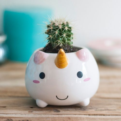 elodie_unicorn_planter_4-500x500